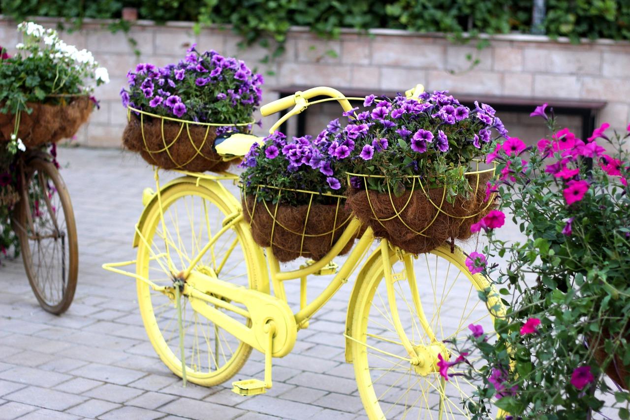 biciclete decor gradina